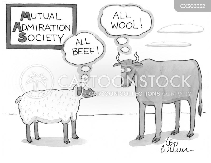 wool cartoon
