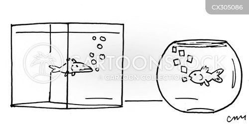 aquarium cartoon