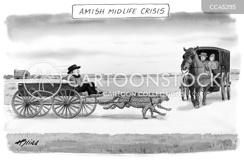 amish society cartoon