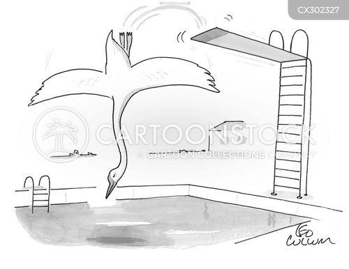 pools cartoon
