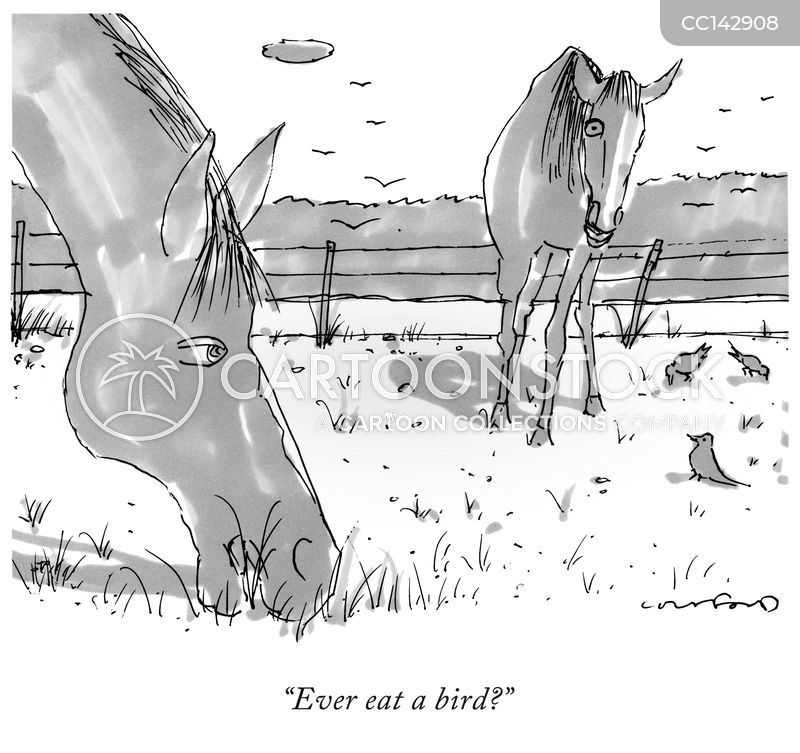 talking horse cartoon