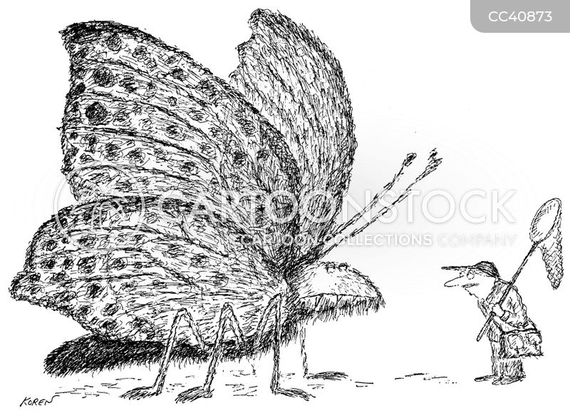 Insect Collector cartoon
