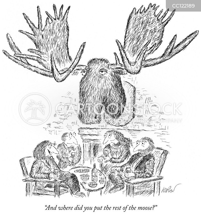 taxidermy cartoon