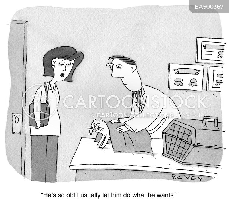 veterinarian cartoon