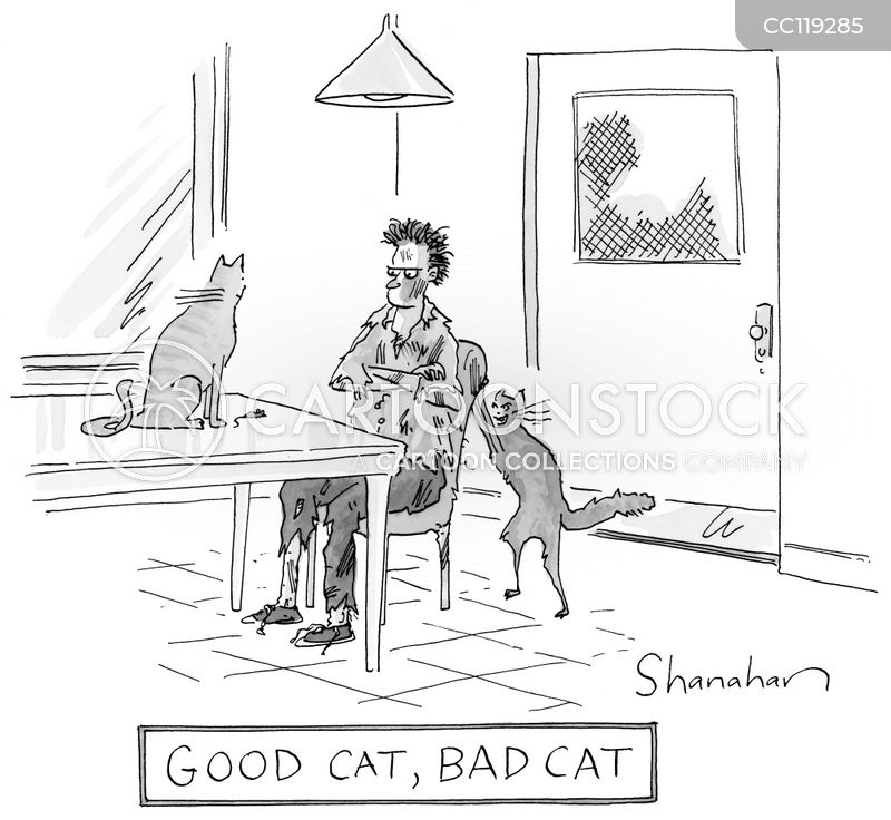 Bad Cat cartoons, Bad Cat cartoon, funny, Bad Cat picture, Bad Cat pictures, Bad Cat image, Bad Cat images, Bad Cat illustration, Bad Cat illustrations