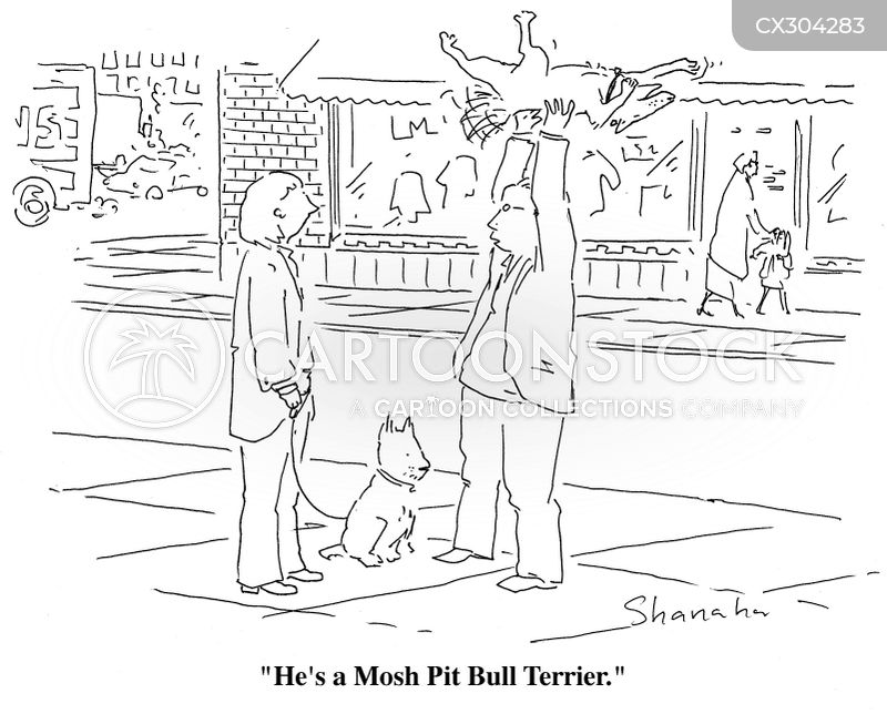 pit bull terrier cartoon