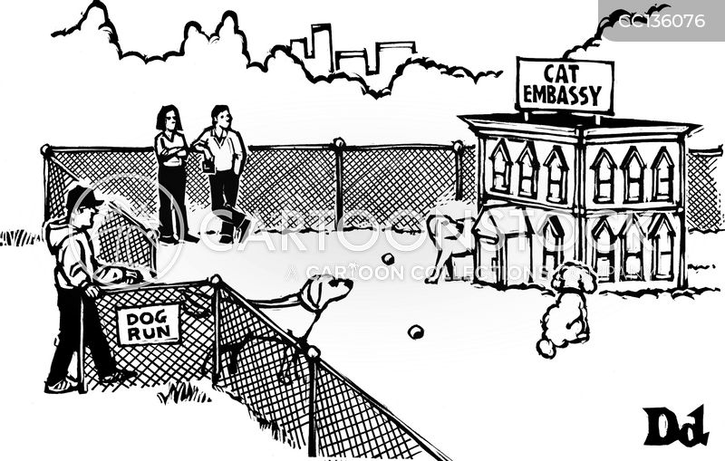 off-leash cartoon