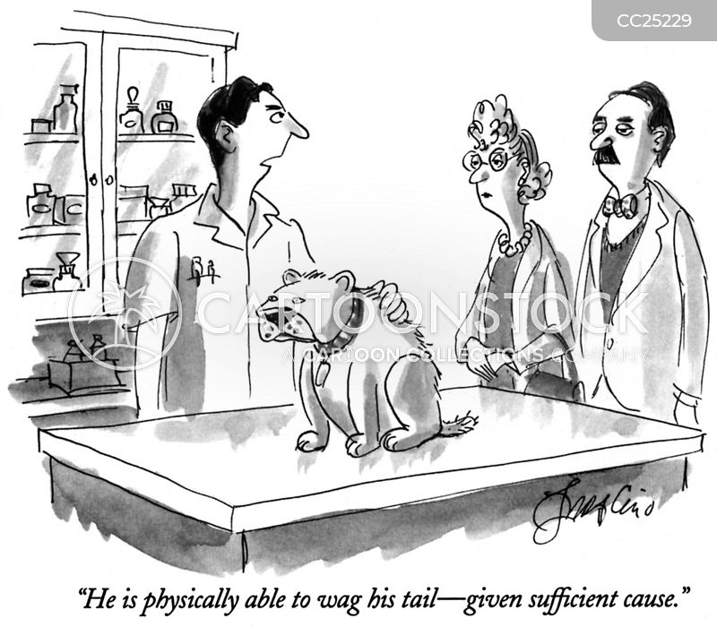 Veterinarian's Offices cartoon