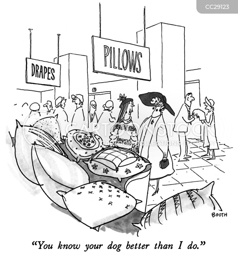 cushion cartoon