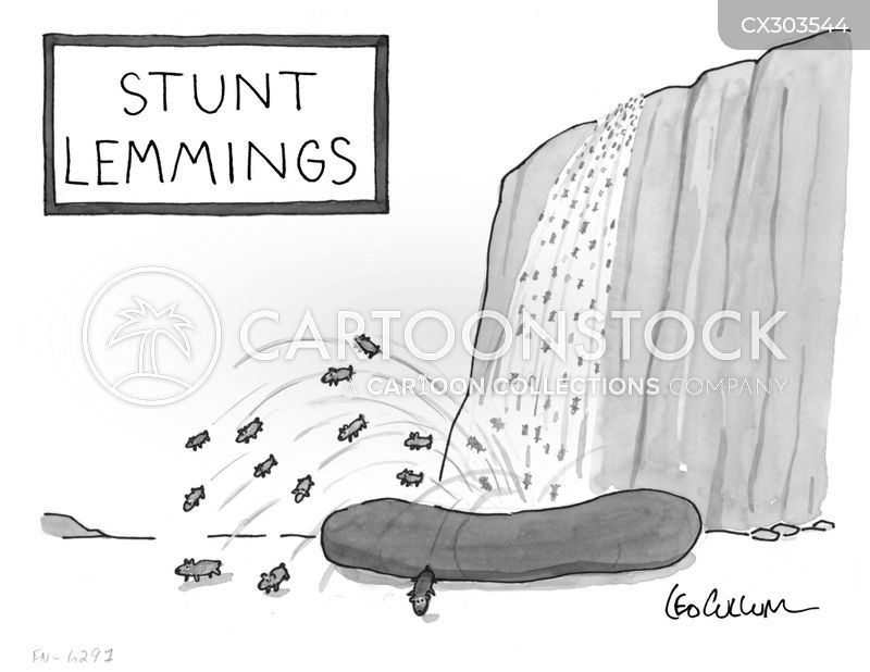 stunt cartoon