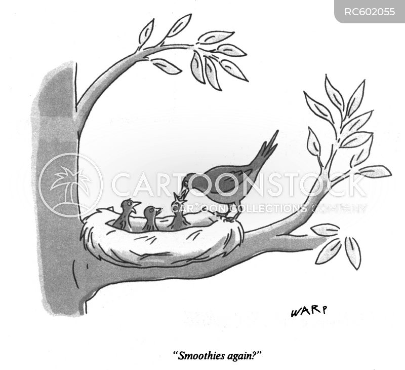 Nest cartoons, Nest cartoon, funny, Nest picture, Nest pictures, Nest image, Nest images, Nest illustration, Nest illustrations