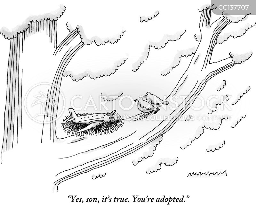 adopted cartoon