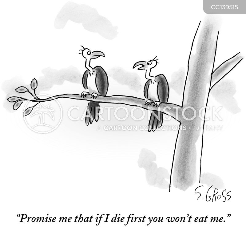 Promise cartoon