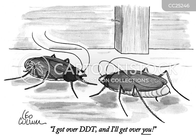 Insects cartoons, Insects cartoon, funny, Insects picture, Insects pictures, Insects image, Insects images, Insects illustration, Insects illustrations