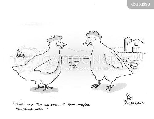 chick cartoon
