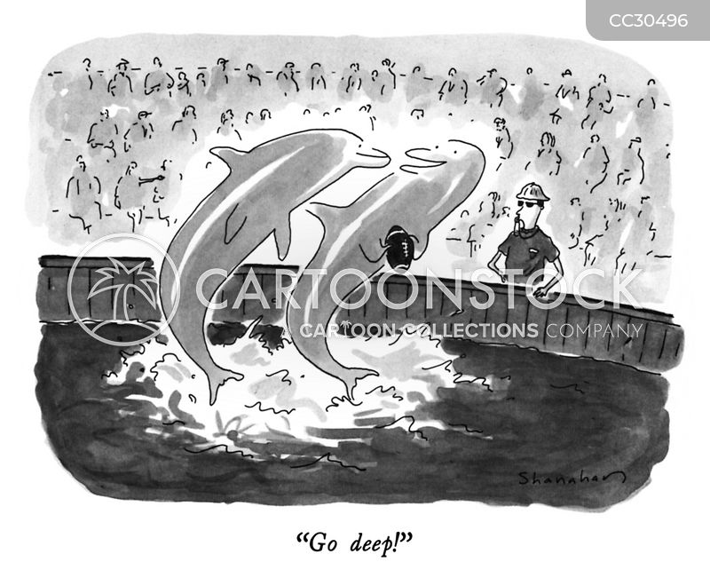 dolphin cartoon