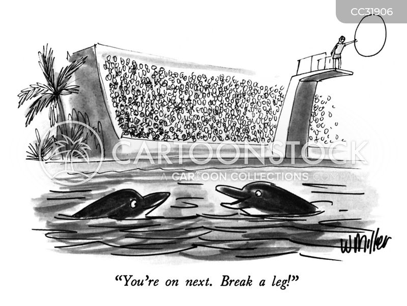 porpoise cartoon