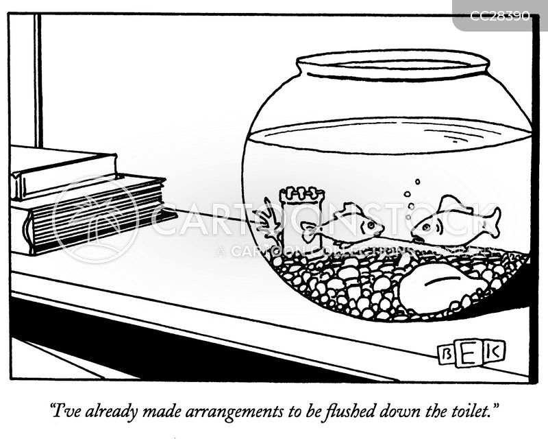 goldfish bowl cartoon