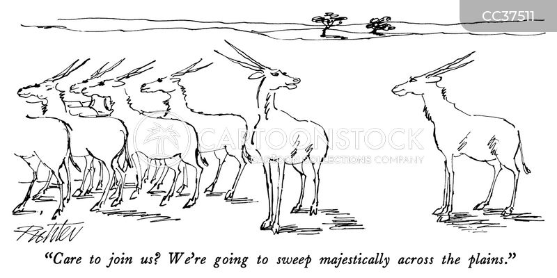 Antelopes cartoon