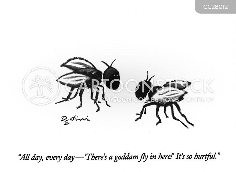 fly cartoon