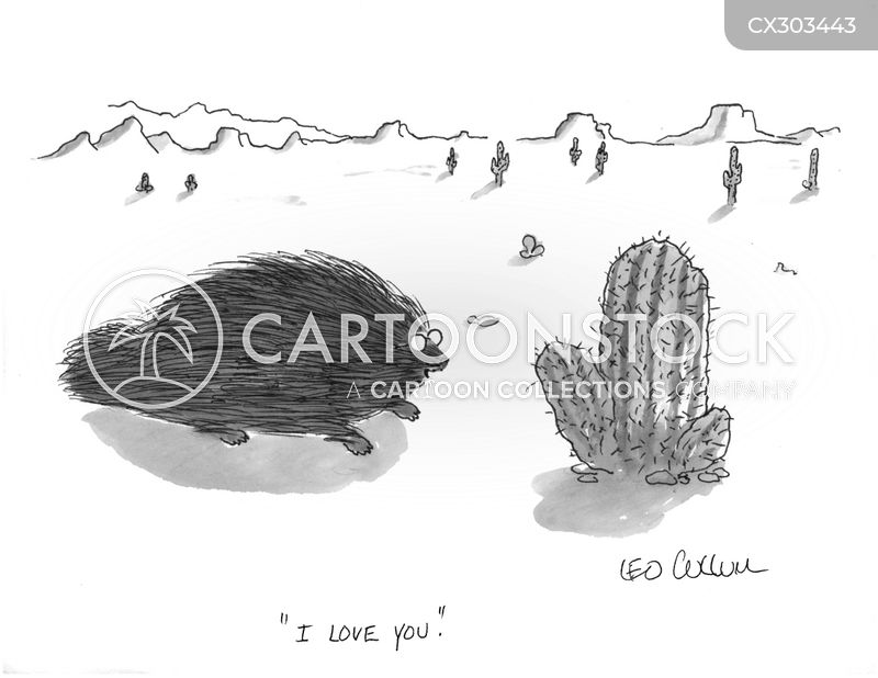 cactus cartoon