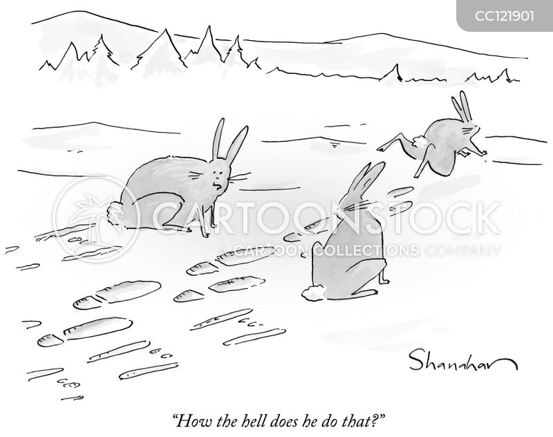 bunny cartoon