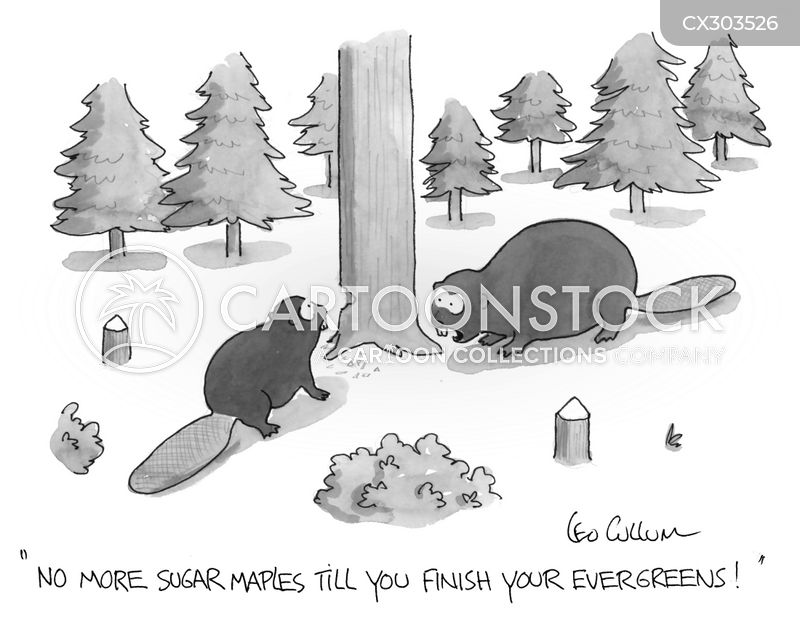 Tree cartoons, Tree cartoon, funny, Tree picture, Tree pictures, Tree image, Tree images, Tree illustration, Tree illustrations