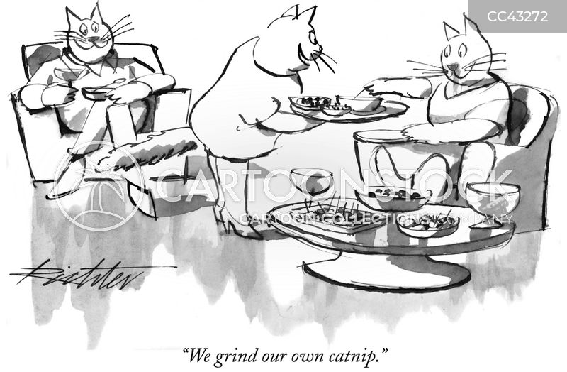 talking cat cartoon