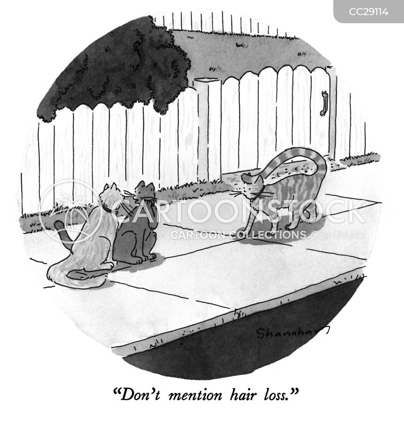 wig cartoon