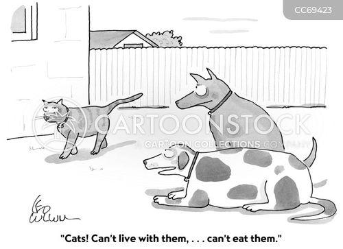 cats vs. dogs cartoon