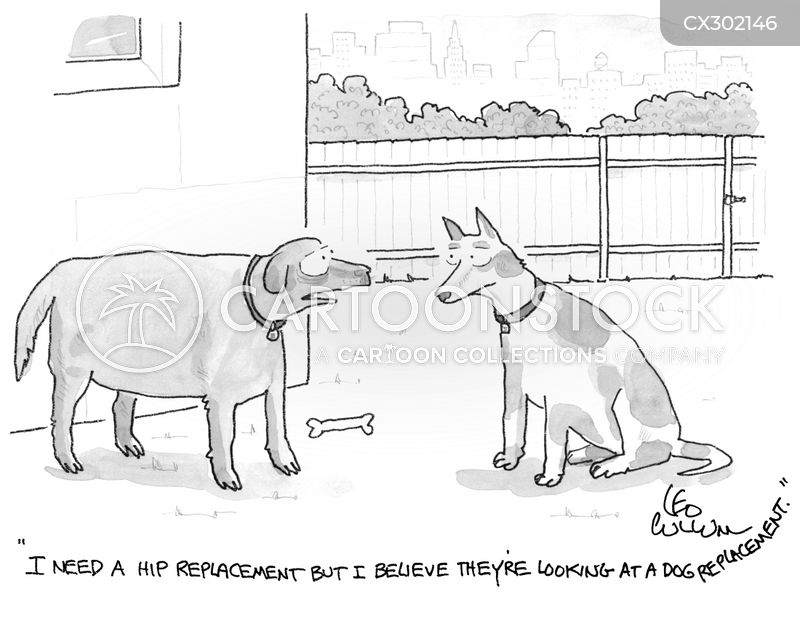 old dog cartoon