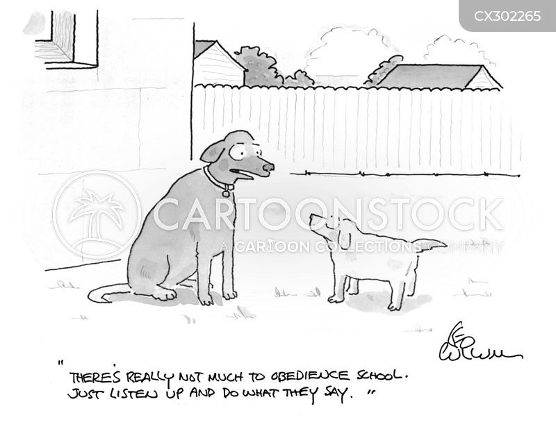 obedience school cartoon
