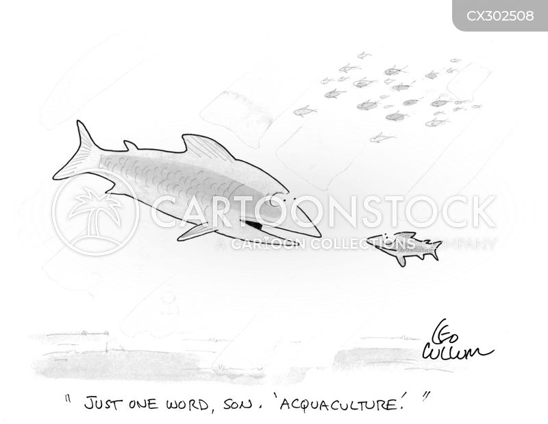aquafarming cartoon