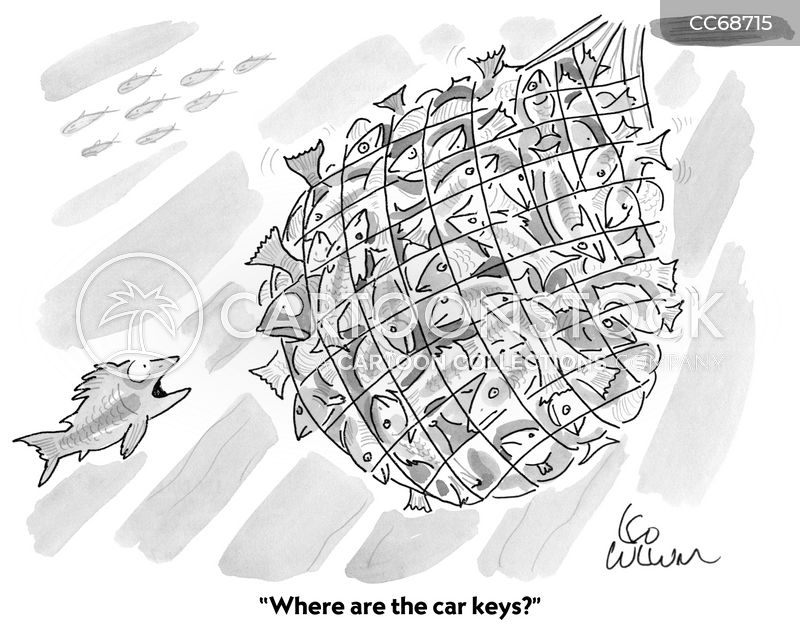 Keys cartoon