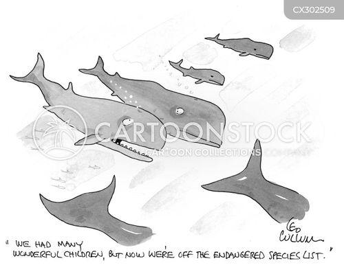 endangered animal cartoon