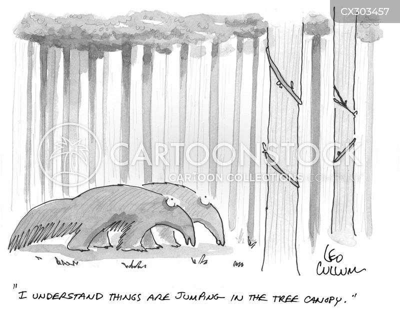 tree canopies cartoon