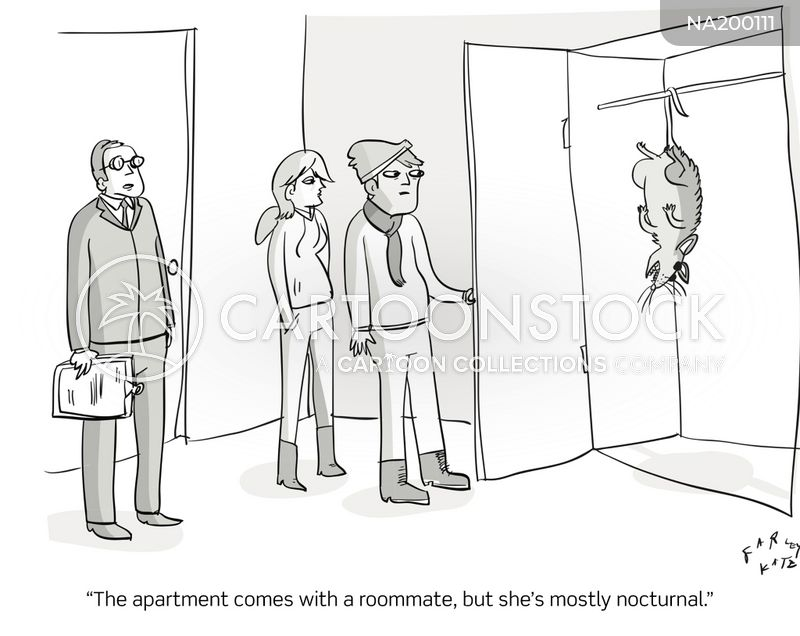 nocturnal animals cartoon