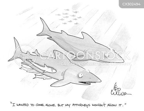 pilot fish cartoon