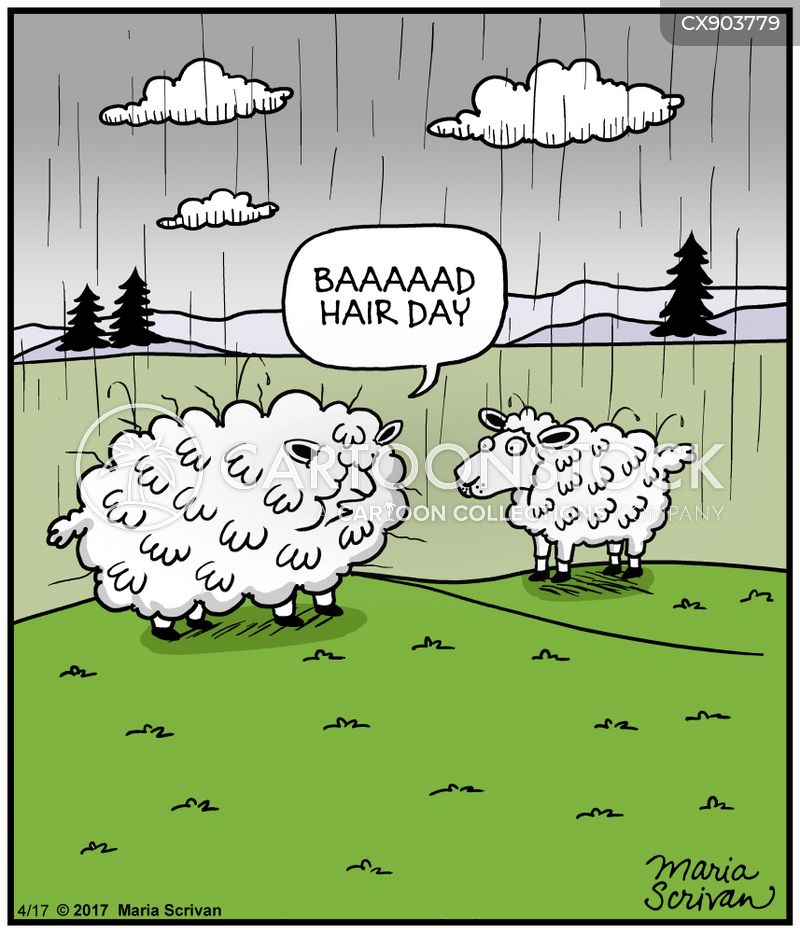ewe cartoon