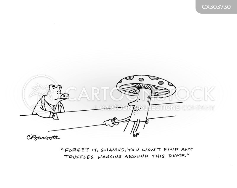 fungi cartoon