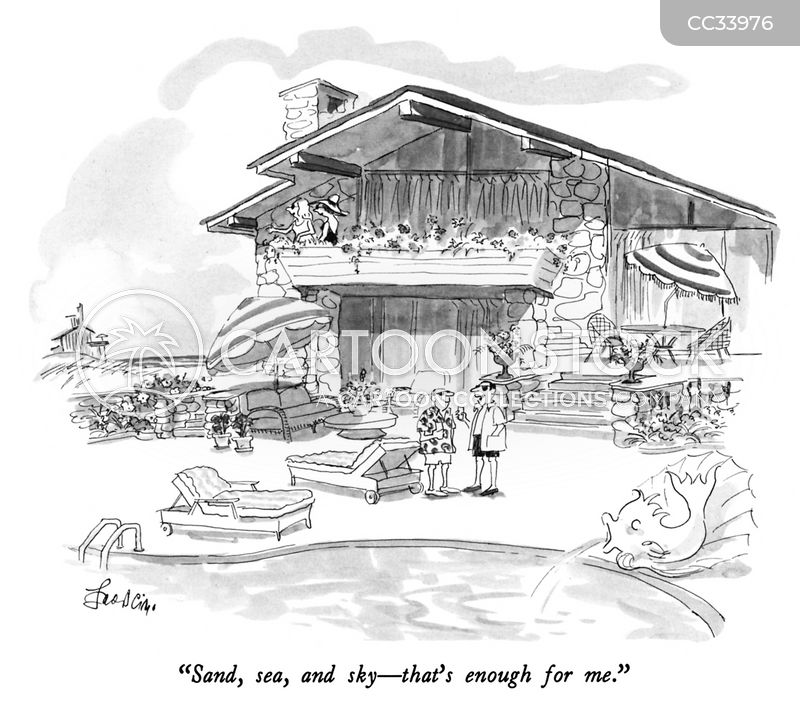 luxury chalets cartoon