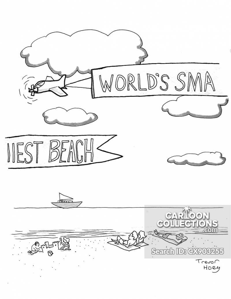 beaches cartoon