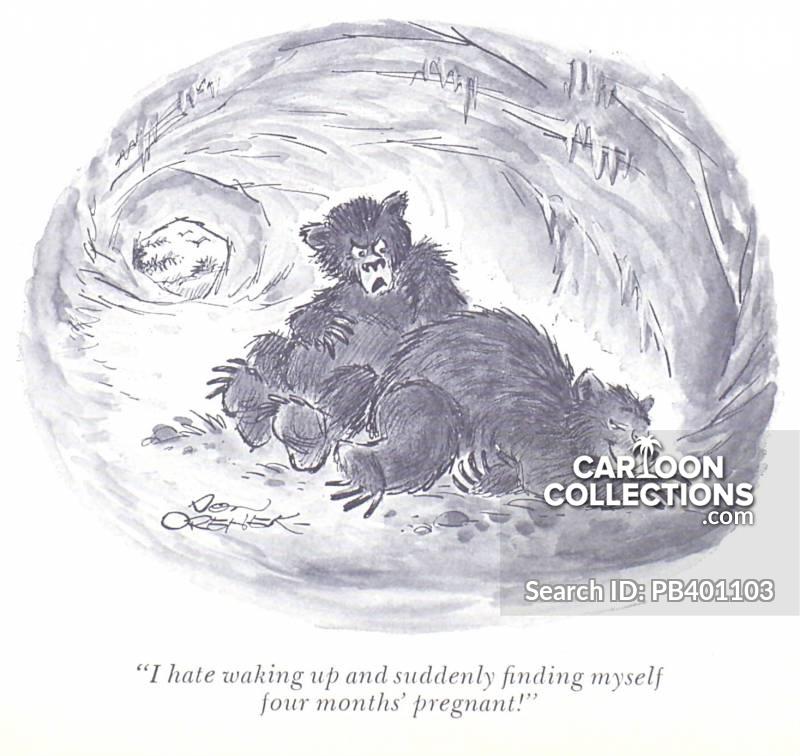 pregnancies cartoon