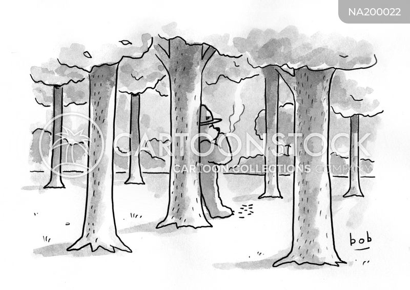 forest cartoon