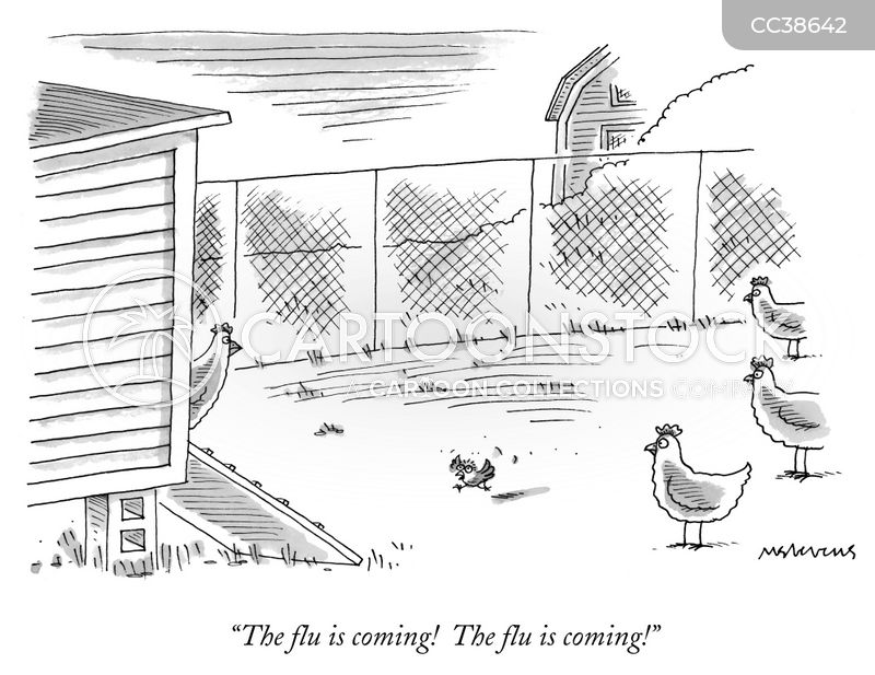 chicken coops cartoon