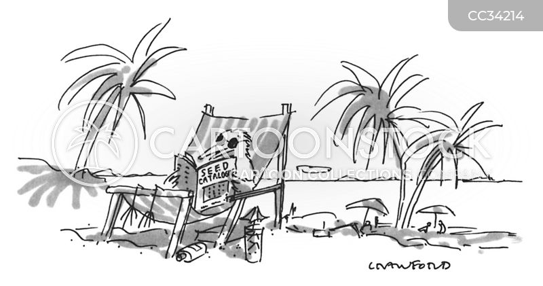 catalogues cartoon
