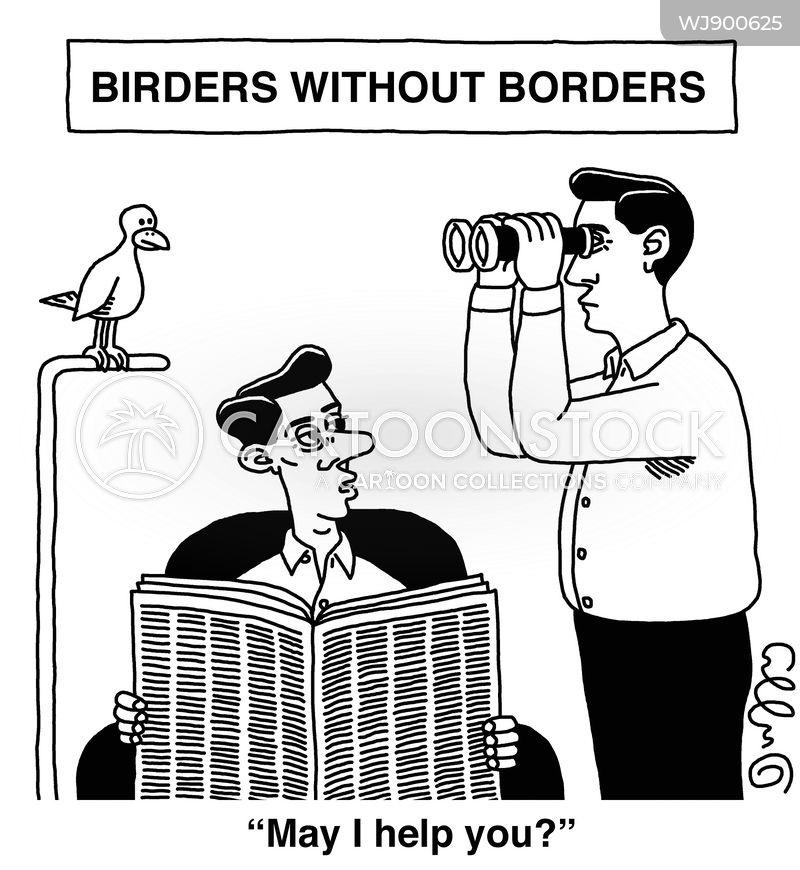 bird watchers cartoon