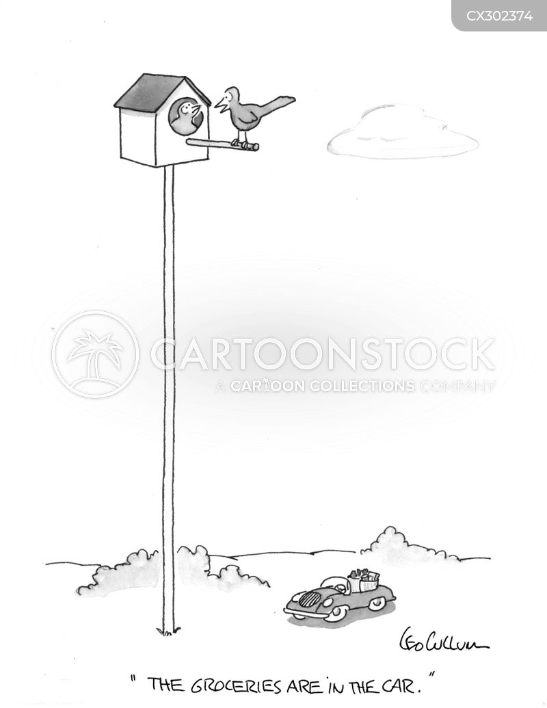 birdhouse cartoon