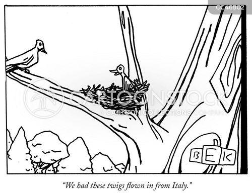 home improvements cartoon