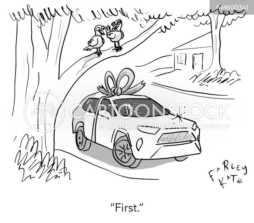 bird poop cartoon